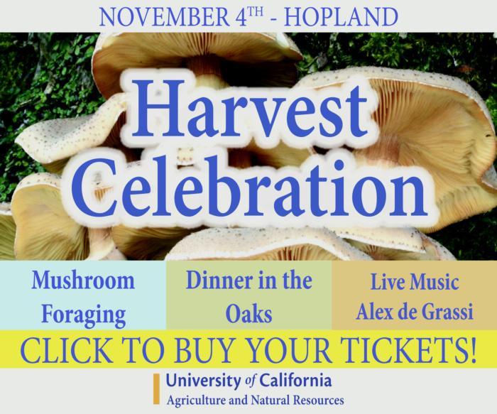 Harvest Celebration 2017 Digital Add buy tickets