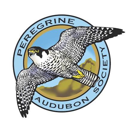 Peregrine Audubon logo